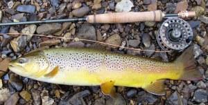 fishing 002-002