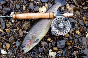 fishing 002-001