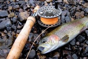 fishing 008-001